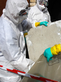 Bedfordshire asbestos survey costs